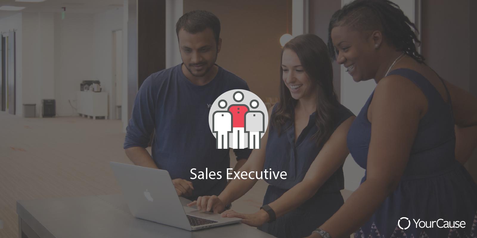 Sales Executive.png